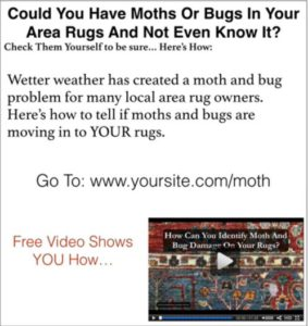 Rug Moths