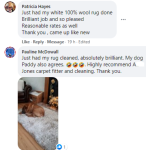 Reviews Wet or Dry Carpet Cleaning