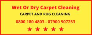 Wet or Dry Carpet Cleaning