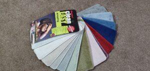Amazing Clean Easy Carpet